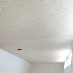 Ceiling paintable textured wallpaper